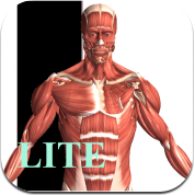 Visual Anatomy Lite for iPad app review