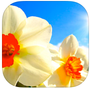 The best flower apps for iPad
