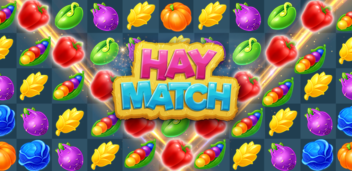 Full Review of Hay Match
