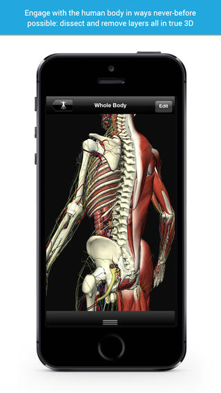 More Than 5,000 3D Anatomy Models image