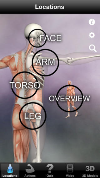 Learn Muscles screenshot 1