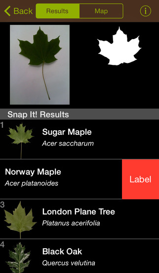 Best Features of Leafsnap  image