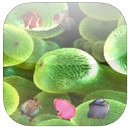 Catch Me If U Can app review: catch yourself a fish