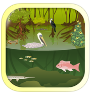 iBiome-Wetland app review: learn about animal habitats