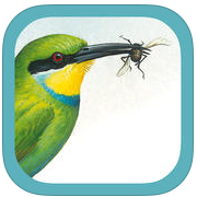 Sasol eBirds of Southern Africa app review: make the most of your bird watching